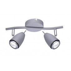 Спот Arte Lamp Regista A1966AP-2GY