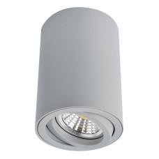 Потолочный светильник Arte Lamp Sentry A1560PL-1GY
