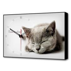 Часы-картина TL-C5022 Toplight