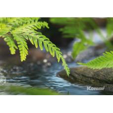 Komar 1-611 Along the River