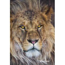 Komar 1-619 Lion