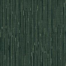 Paravox AN8001