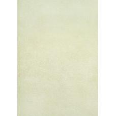 Эрисман 2905-4